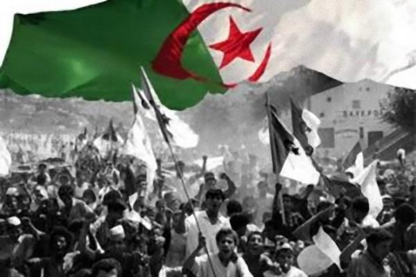 ali-benouari-algerie-reponse-discours-boutlefika-05072015
